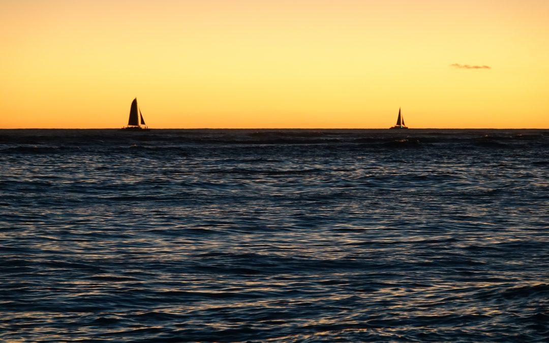 Waterbewoners op wereldreis: op Hawaii in coronatijd